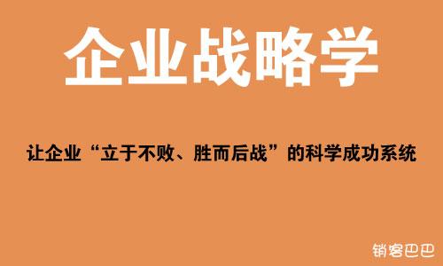 王紫杰 企业战略学 pdf