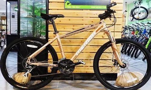 自行车厂跨界营销案例,所有门店改成餐饮店,通过重复消费品吸引客户