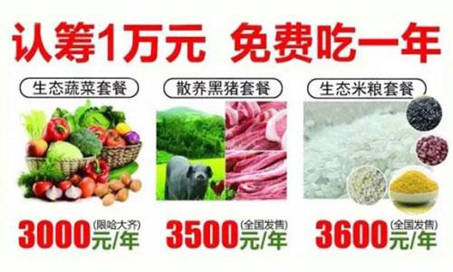 农产品免费模式:认筹1万免费吃一年菜,1年后再无息退还10000元