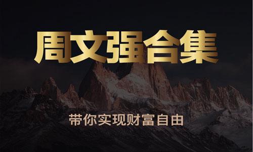 周文强财商学视频全集