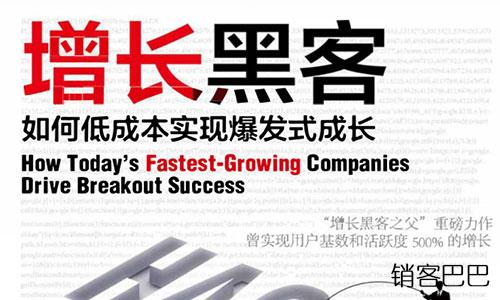 增长黑客 pdf 完整版肖恩著,让你的企业实现用户基数和活跃度500%的增长